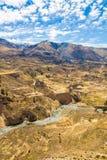Canyon di Colca, Perù, Sudamerica Inche per sviluppare agricoltura dei terrazzi con lo stagno e la scogliera Uno dei canyon più p Immagine Stock