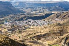Canyon di Colca, Perù, Sudamerica. le inche per sviluppare agricoltura dei terrazzi con lo stagno e la scogliera uno dei canyon pi Fotografie Stock Libere da Diritti