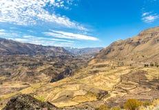 Canyon di Colca, Perù, Sudamerica. Uno dei canyon più profondi nel wor Immagine Stock