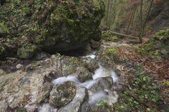 Canyon di diery di Janosikove Immagini Stock Libere da Diritti