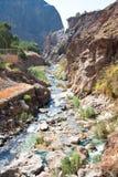 Canyon di Hammamat Ma'in, Giordano Immagine Stock