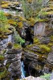 Canyon di Maligne Immagine Stock