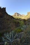 Canyon di Masca tramite un fish-eye Immagine Stock Libera da Diritti