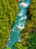 Canyon di stupore di Cesalpina nel Montenegro immagini stock