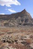 Canyon di Tusher immagine stock
