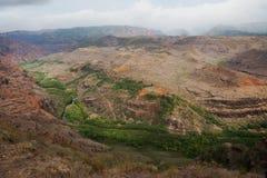 Canyon di Waimea al ciclo della natura di Iliau fotografia stock