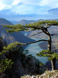 Canyon of Drina River in Serbia. Look at the canyon of Drina River in Serbia- the third deepest canyon in the world-the viewpoint Banjska rock in the National royalty free stock photography