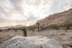 Canyon in En Gedi Nature Reserve and National Park, Israel Royalty Free Stock Photos