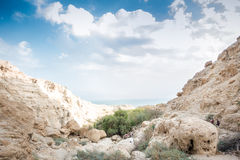 Canyon in En Gedi Nature Reserve and National Park, Israel Royalty Free Stock Photography