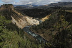 Canyon en parc national de yellowstone, Wyoming, Etats-Unis Image libre de droits