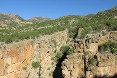 Canyon en vallée de paradis au Maroc Photographie stock libre de droits