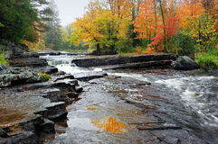 Canyon Falls Michigan Autumn Waterfall Royalty Free Stock Photos