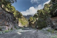 Canyon of fear la palma Stock Photo