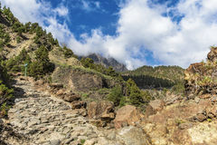 Canyon of fear la palma vertical Royalty Free Stock Image
