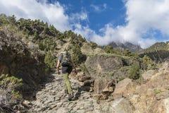 Canyon of fear la palma woman climbing path Stock Images
