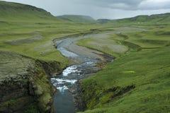 Canyon Fjadrargljufur, Iceland. River in deep canyon Fjadrargljufur, Iceland Stock Images