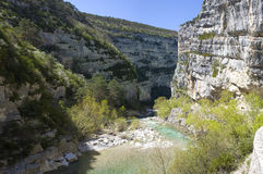 Canyon Gorges du Verdon in the south of France Royalty Free Stock Images