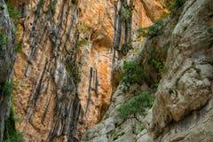 Canyon of Gorropu Stock Photos