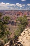 Canyon grand Image libre de droits