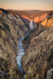 Canyon grand de parc national Wyoming de Yellowstone Image stock