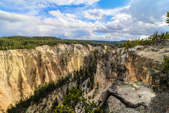 Canyon grand Yellowstone Image libre de droits