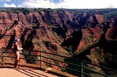 Canyon in Hawaii Stock Image