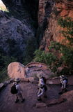 Canyon Hikers. Hikers on Walter's Wiggles, Trail to Angel's Landing, Zion National Park, Utah Stock Photo