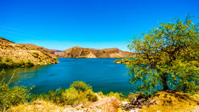 Canyon Lake and the Desert Landscape of Tonto National Forest. Along the Apache Trail in Arizona, USA Royalty Free Stock Photo