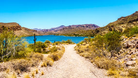 Canyon Lake and the Desert Landscape of Tonto National Forest. Along the Apache Trail in Arizona, USA Royalty Free Stock Images