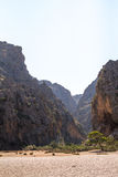 Canyon Royalty Free Stock Images