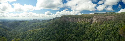 Canyon Lookout Springbrook National Park. A 12x36 inch panorama view of the Springbrook National park canyon taken from the Canyon Lookout in Springbrook in Royalty Free Stock Photos