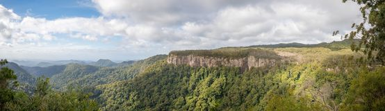 Canyon Lookout, Springbrook National Park, Queensland, Australia royalty free stock photo