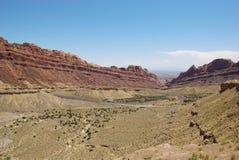 Canyon macchiato del lupo Immagine Stock