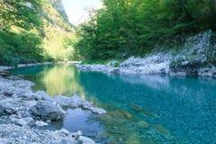 Canyon Montenegro della Cesalpina Fotografia Stock Libera da Diritti