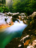 Canyon Mostnica (Mostnice Korita) Royalty Free Stock Photo
