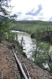 Canyon of the mountain river in Yakutia. Royalty Free Stock Photography
