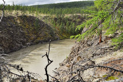 Canyon of the mountain river in Yakutia. Stock Photography