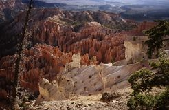 Canyon N.P. di Bryce. Fotografie Stock