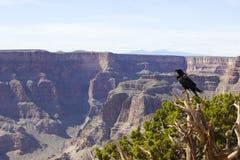 Canyon, National Park, Rock, Escarpment Stock Image