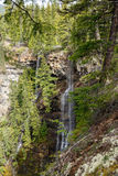 Canyon near Spahats Falls Stock Photo