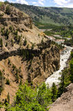 Canyon in Yellowstone Stock Photos