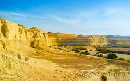 The canyon in Negev desert Stock Images