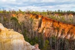 Canyon nel parco di stato del canyon di provvidenza, Georgia, U.S.A. fotografie stock