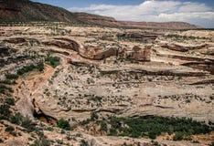 Canyon nell'Utah Immagine Stock