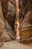 Canyon nella città antica di PETRA (Giordania) - vista di apertura di Al-Khazneh famoso (aka Ministero del Tesoro) immagini stock