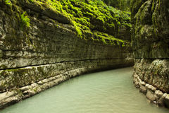 Canyon nella giungla dell'Abkhazia Fotografie Stock Libere da Diritti