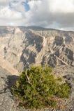 Canyon nelle falsità di Jabal Fotografia Stock