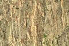 Canyon noir Photographie stock libre de droits
