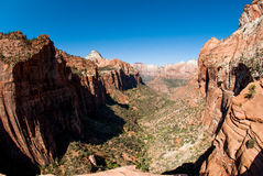 Canyon overlook, Zion national park Stock Images