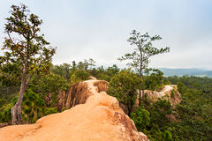 Canyon in Pai Royalty Free Stock Photography